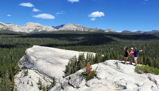 Yosemite Walking & Hiking Tour